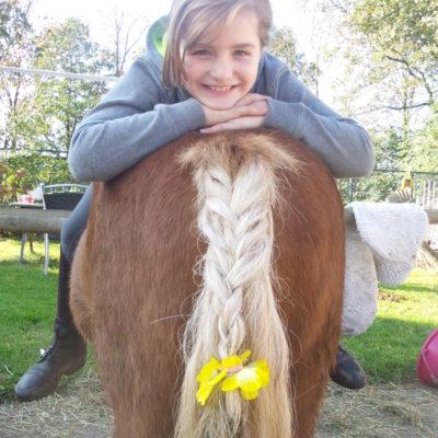 Vlecht staart pony