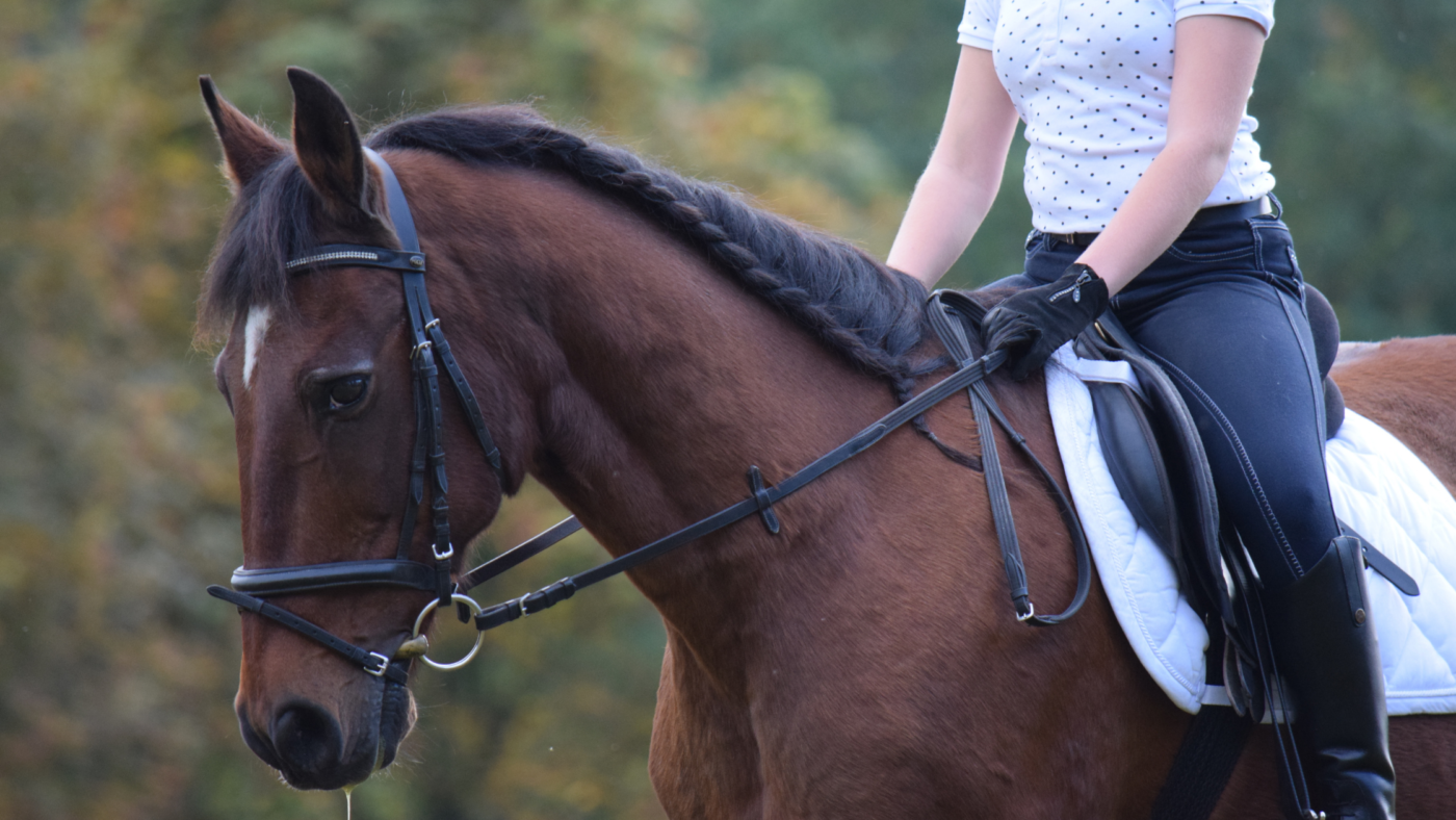 Zit ik wel goed op mijn paard?